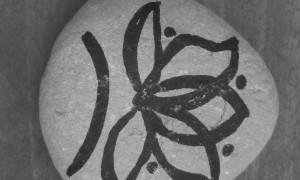 piedras b y n-2