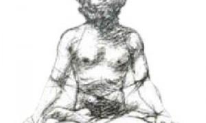 Guía de asanas – colaboración con Yoga Institute